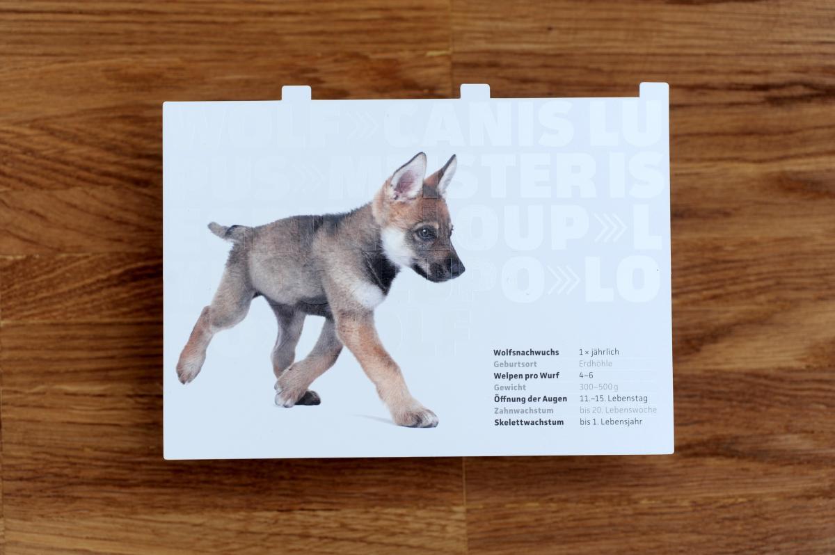Wolf manufaktur neue musterbox erschienen slanted - Wolf manufaktur ...