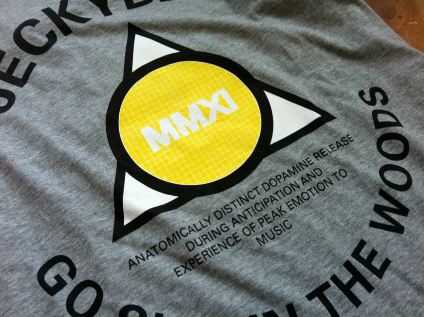 Shirttriangle_03.jpg
