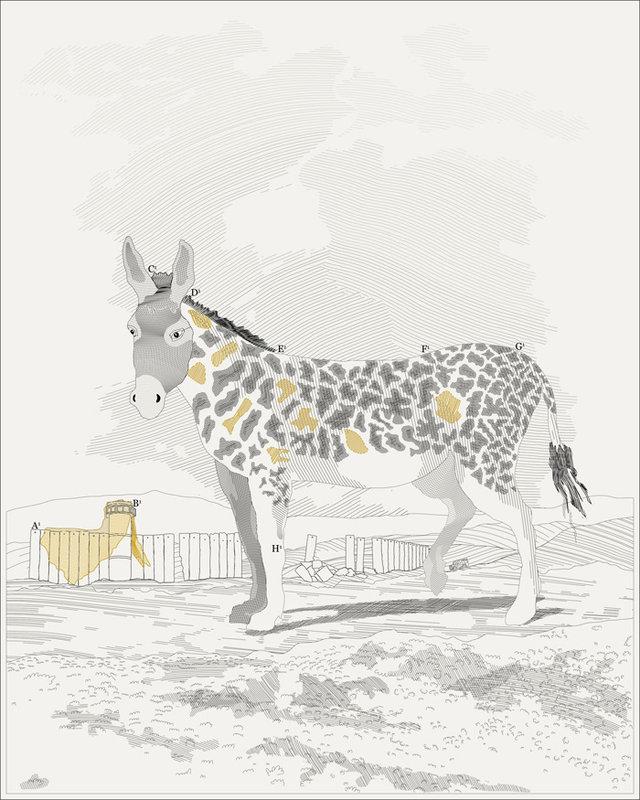 donkey.-m_zoo_slanted.jpg