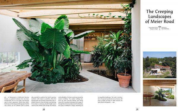slanted_evergreens_livingwithplans_004.jpg