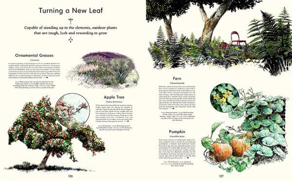 slanted_evergreens_livingwithplans_007.jpg