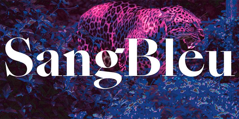 SangBleu - slanted
