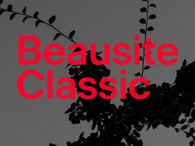 slanted-fatype-beausite-classic-01.jpg