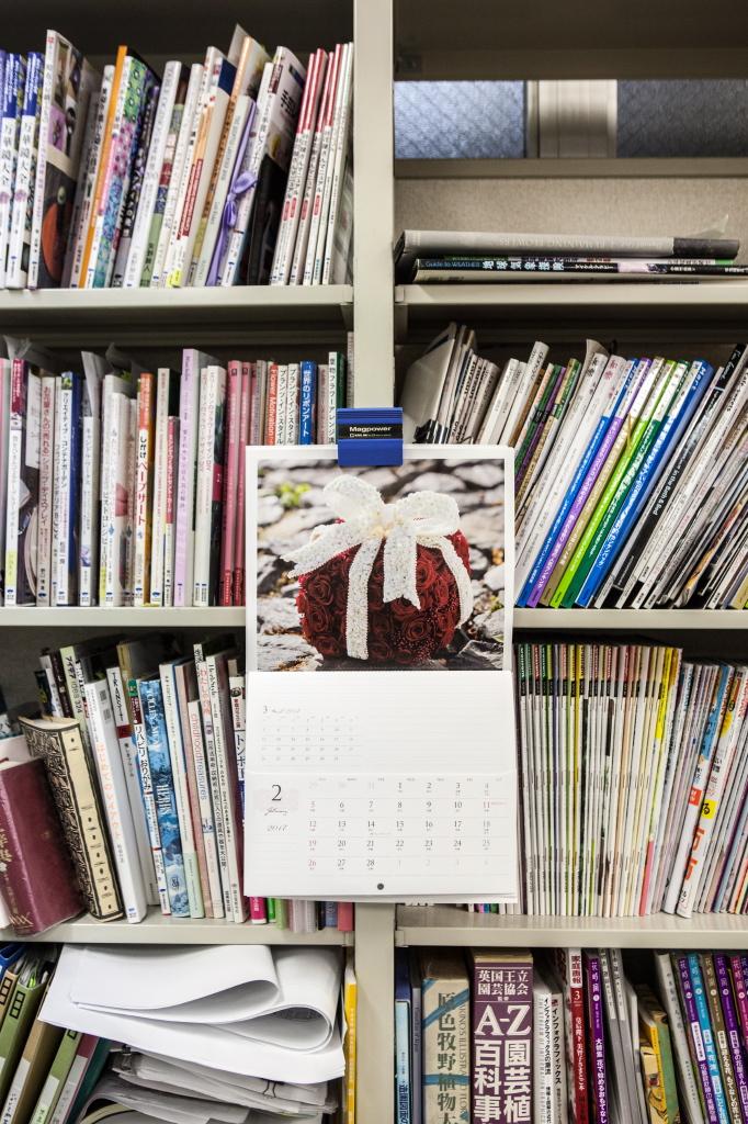 Slanted in Tokyo / Kiyonori Muroga