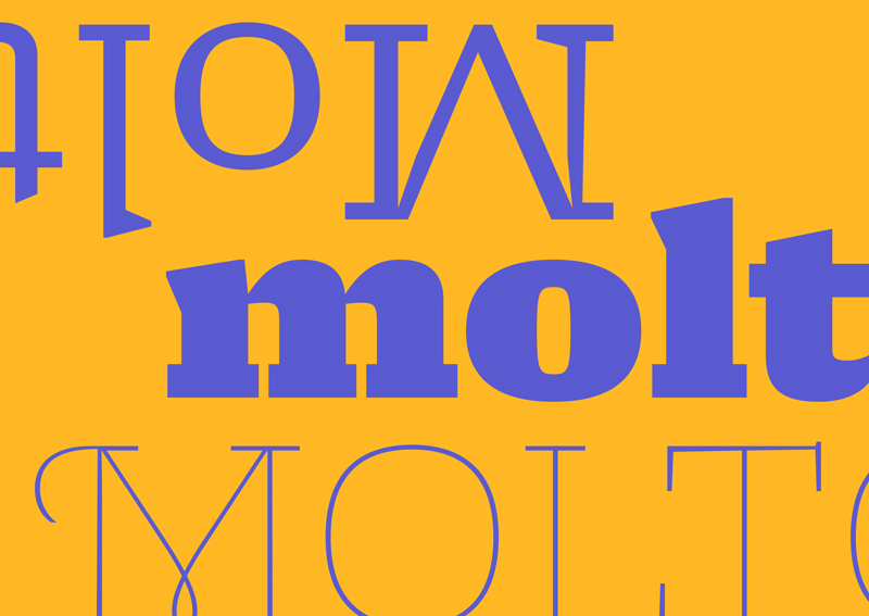 Molto_typetogether-typeofthemonth_5