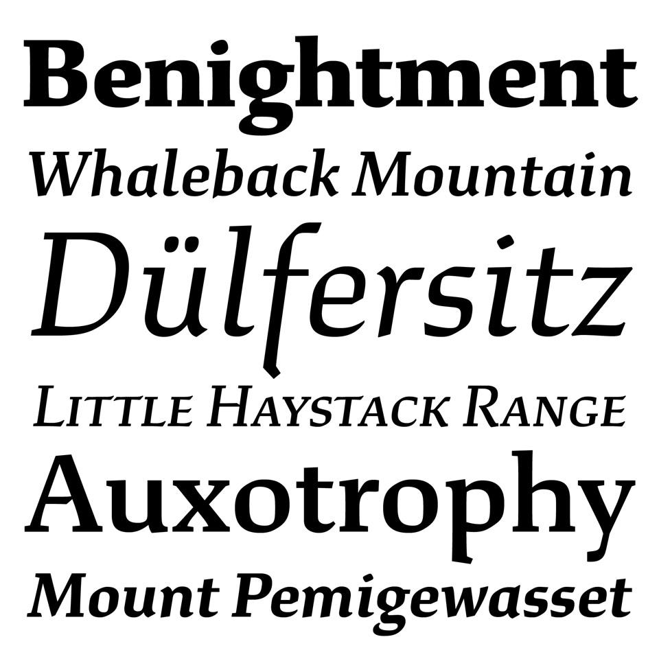 Slanted-Typefaceofthemonth-Study-XYZFundry-02