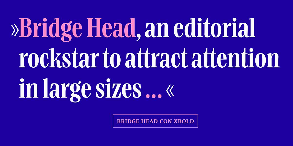 Bridge Text und Head