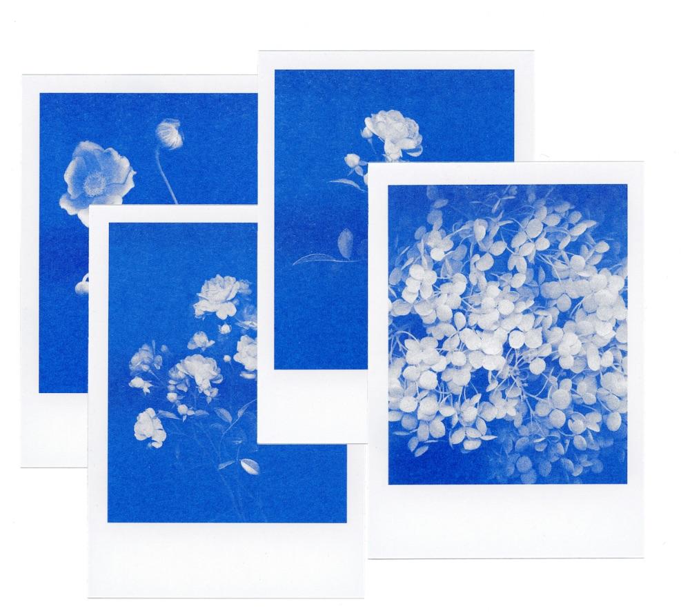 4 florale risograph-postkarten