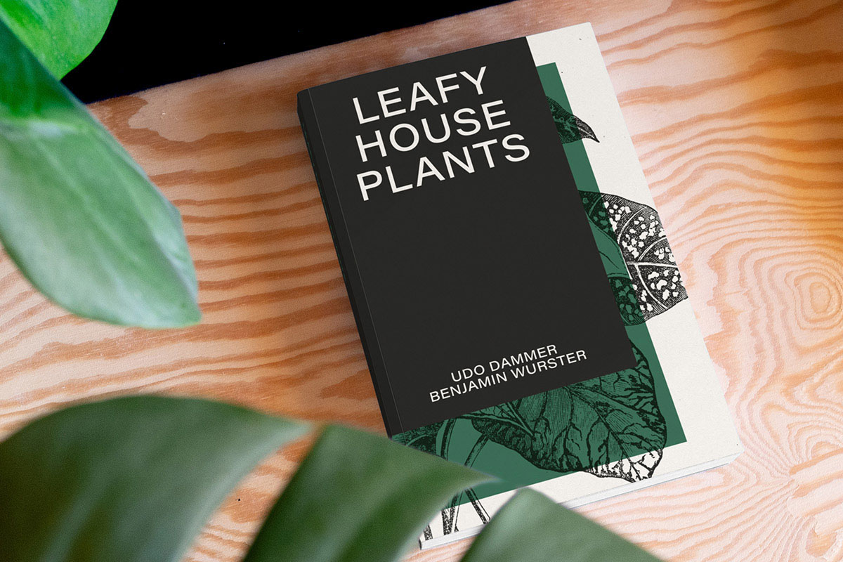 Leafy House Plants Cover Plant