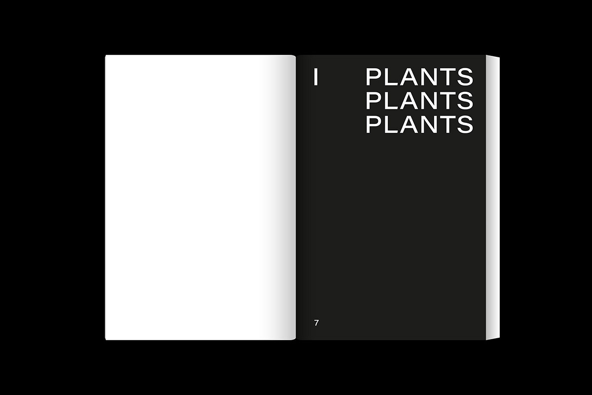 slanted-leafyhouseplants_image_06_1200px
