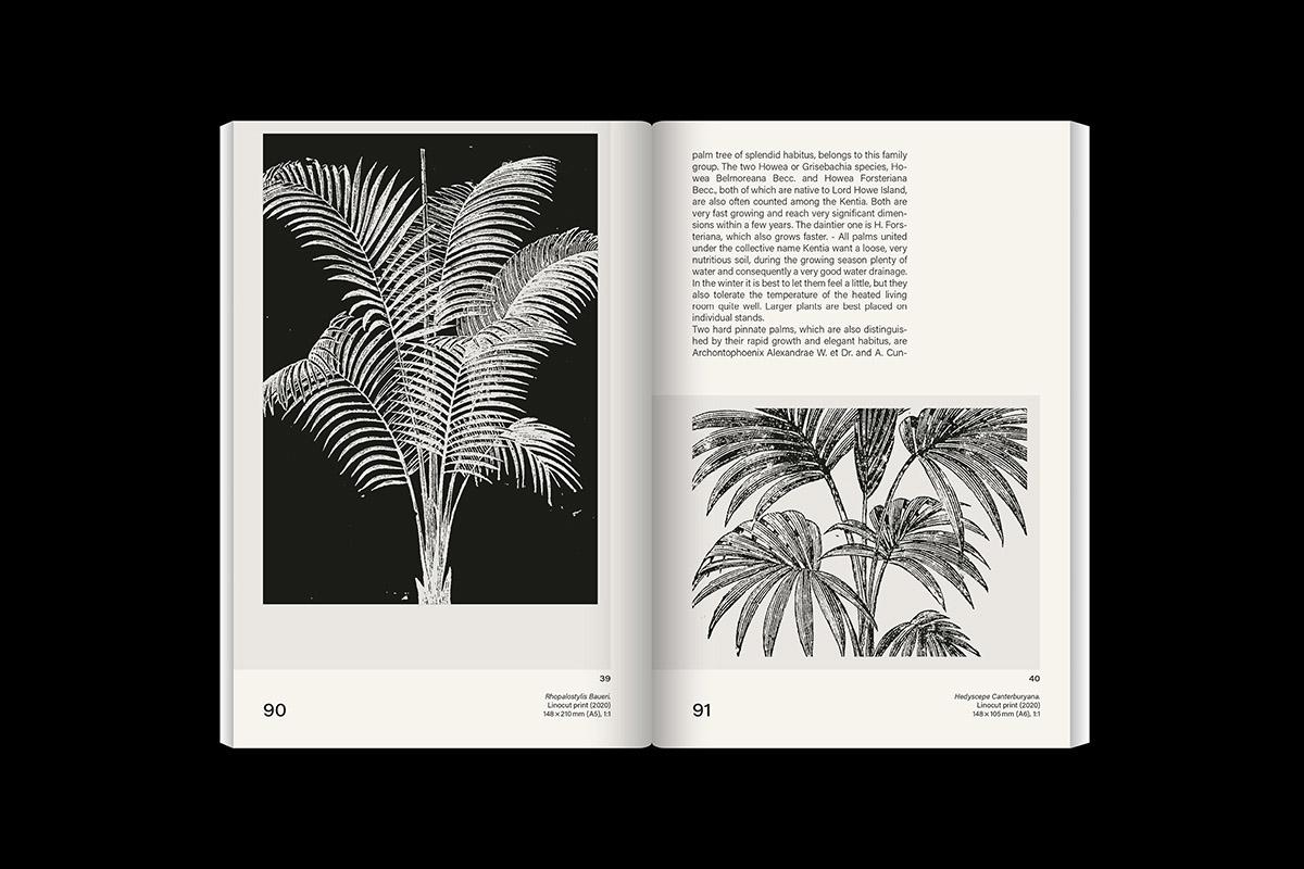 slanted-leafyhouseplants_image_11_1200px