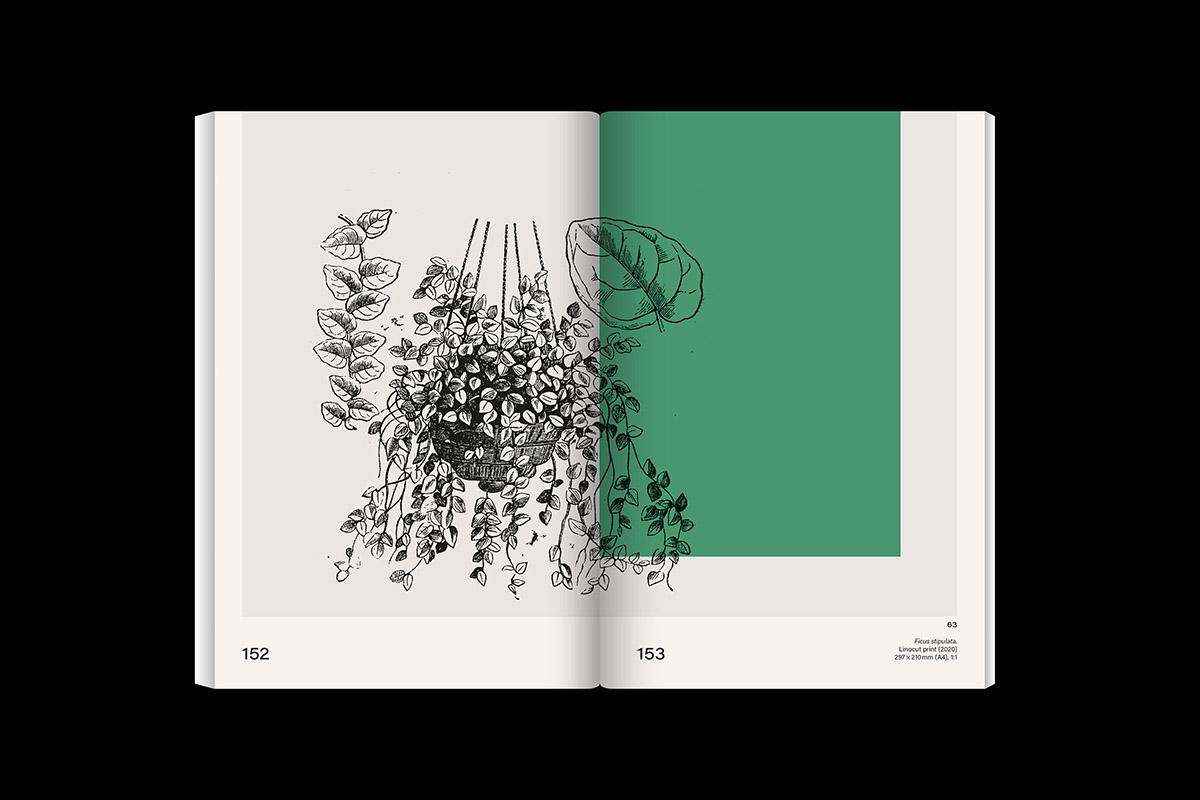 slanted-leafyhouseplants_image_12_1200px