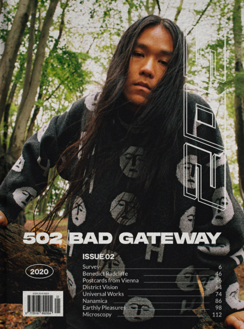 502 Bad Gateway Issue 2
