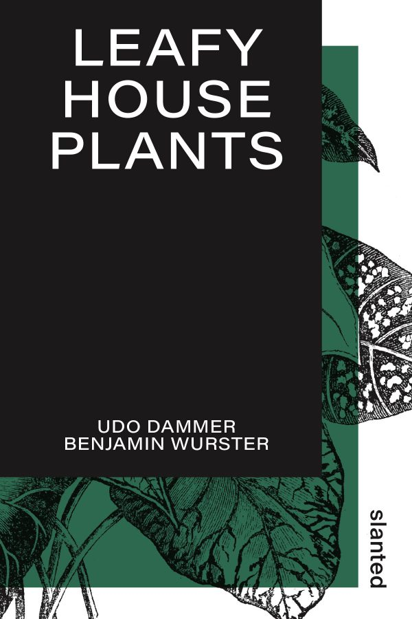 Leafy House Plants