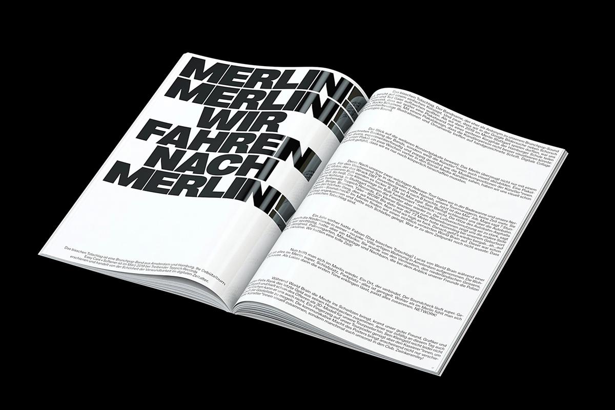 2020-11-23_5fbbc3e4d79bf_PP_Merlin_3