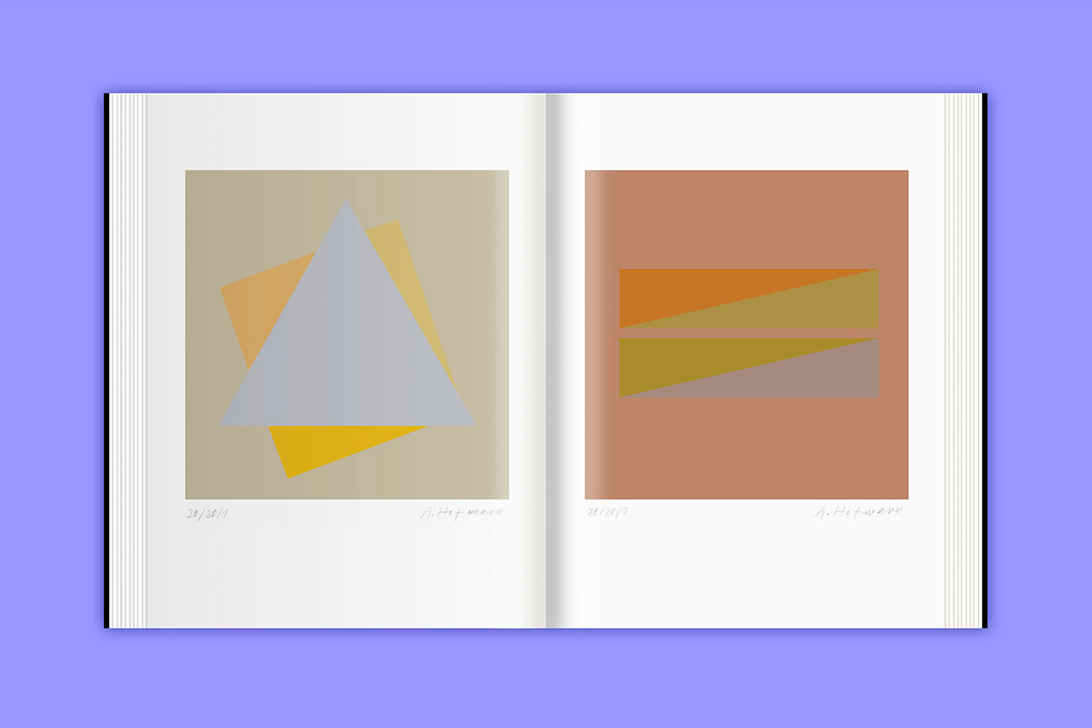 Slanted-Publikation-Armin-Hofmann-Reduktion-Ethik-Didaktik_17