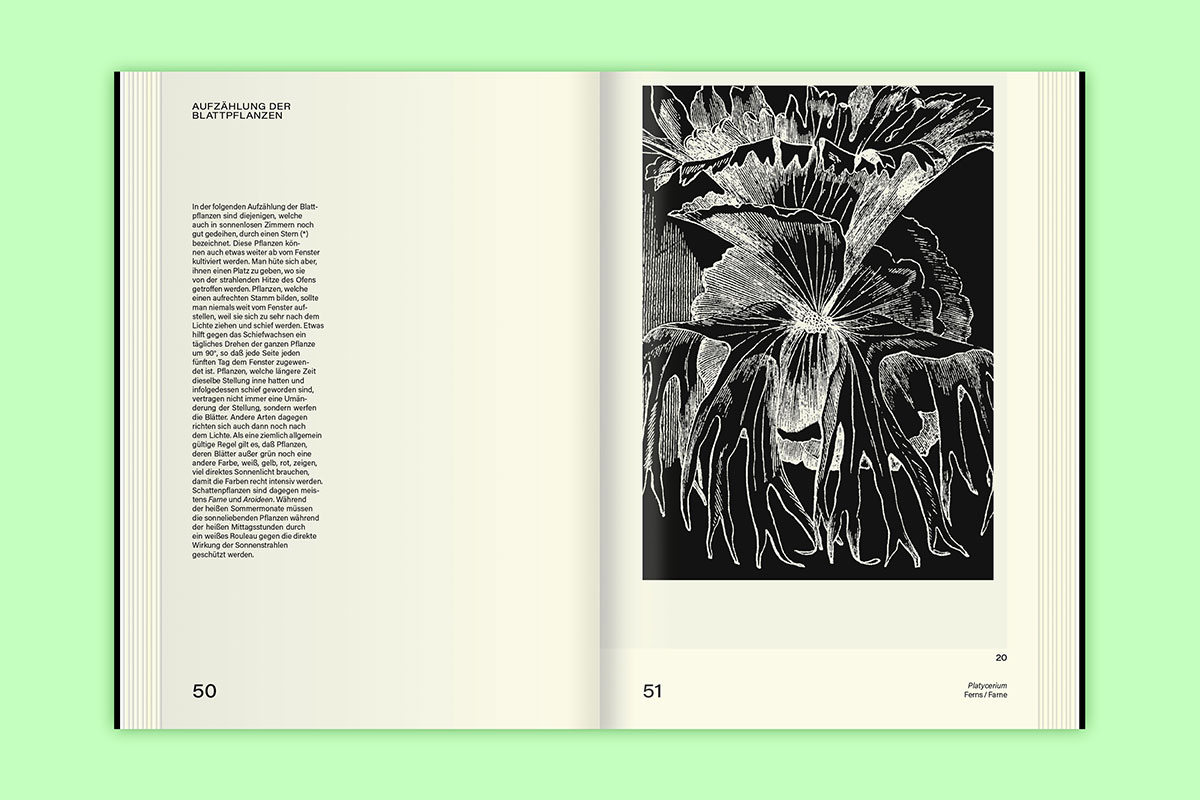 Slanted-Publishers-Leavy-House-Plants_07