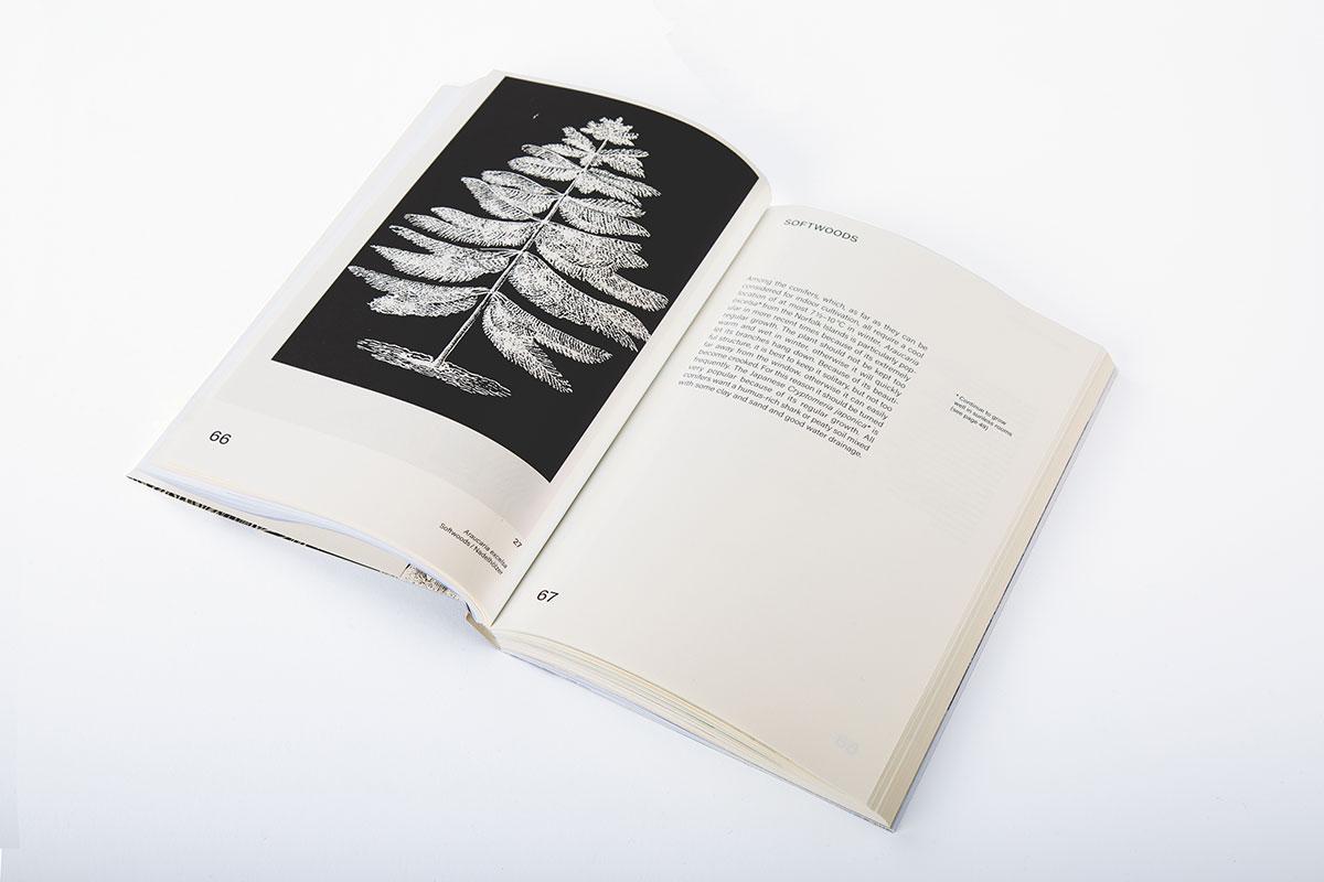 Slanted-Publishers-Leavy-House-Plants_08