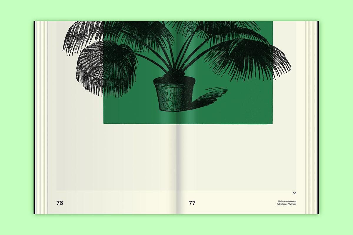 Slanted-Publishers-Leavy-House-Plants_10