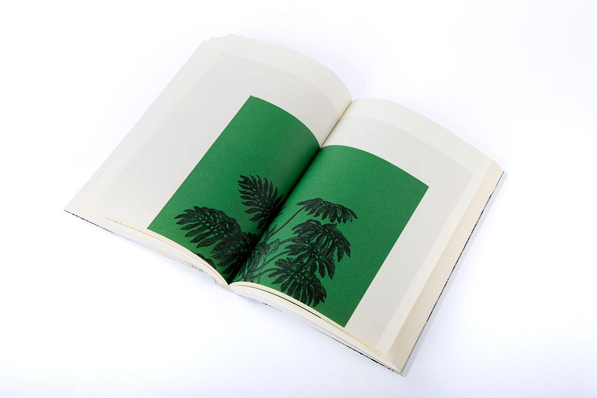 Slanted-Publishers-Leavy-House-Plants_14