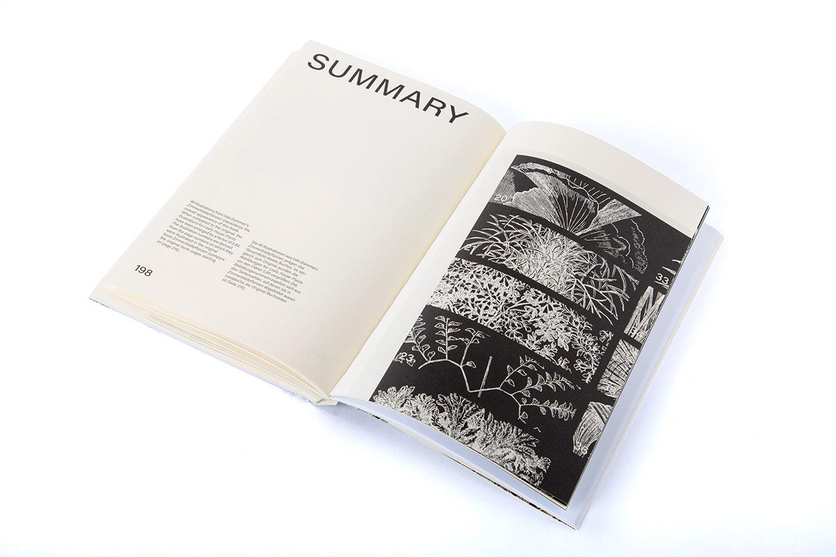 Slanted-Publishers-Leavy-House-Plants_16
