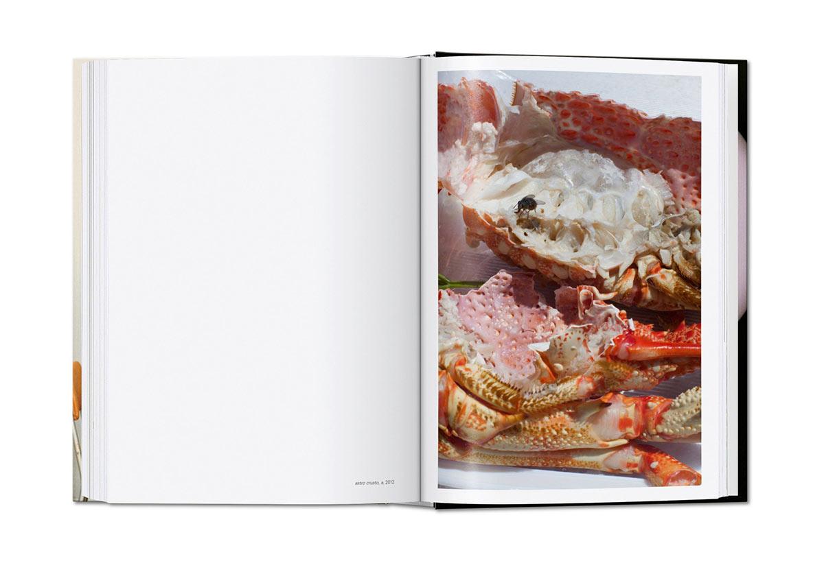 Slanted-Wolfgang-Tillmans-four-books_14