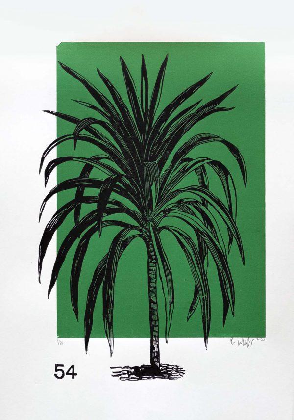 Lino Print (A3)   Cordyline australis