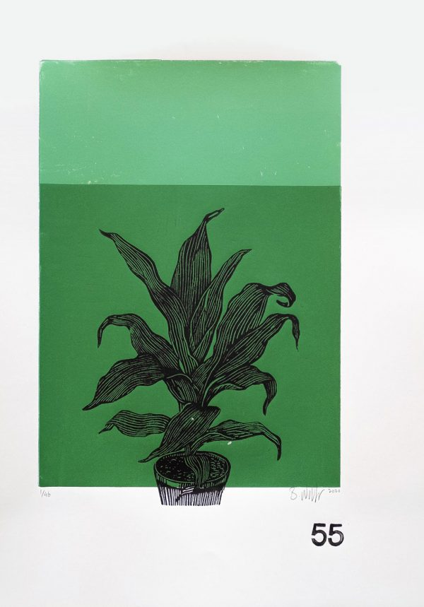 Lino Print (A3) | Dracaena rothiana