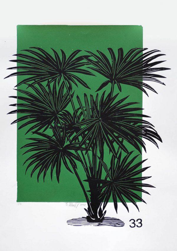 Lino Print (A3) | Livistona australis