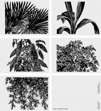 Set of Postcards (A6) | Leafy House Plants