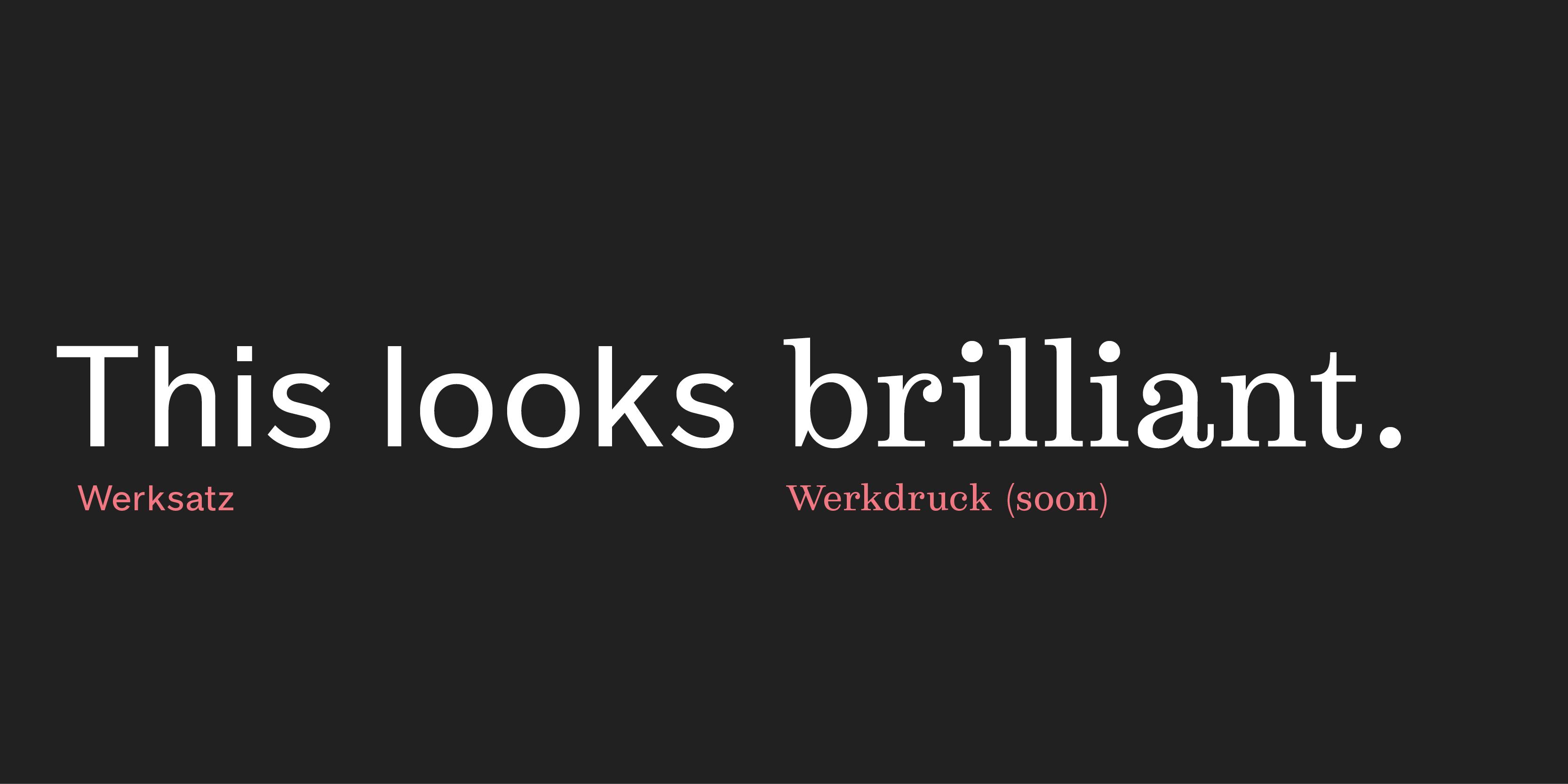 visuals-werksatz14