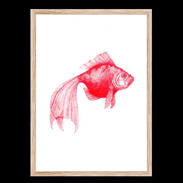Artprint Schleierfisch | Risograph Art Print