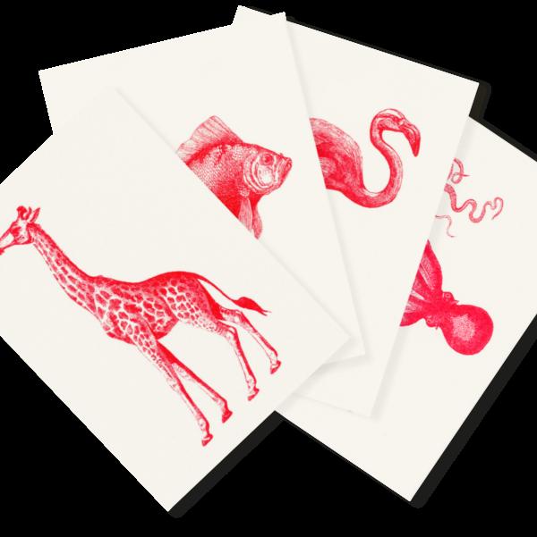 Roter Zoo   4 Monochrome Risograph Postcards