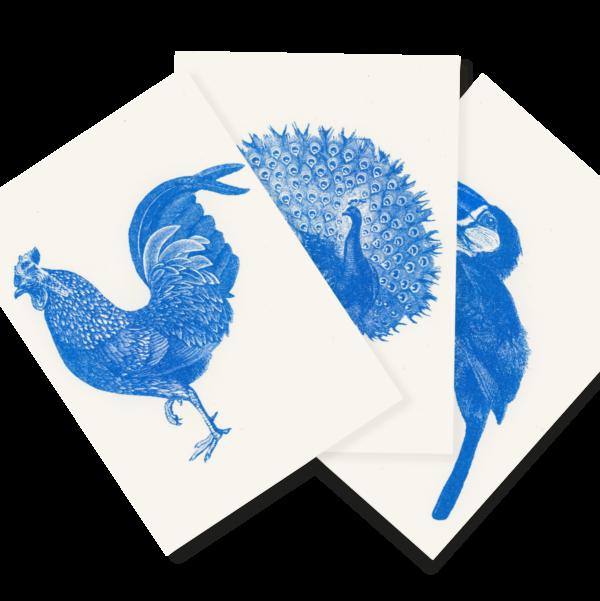 Blauer Zoo | Blue Zoo | 3 Risograph Postcards